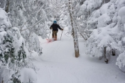 Winter Storm Harper Delivers the Goods for Vermont Ski Areas